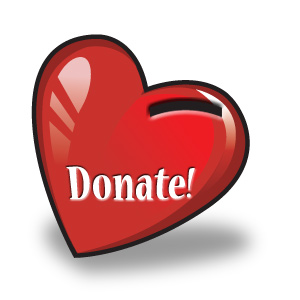 Donate to the Ryan Lee Holland Foundation, Inc.